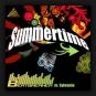 Beatbreaker vs. Sylwania - Summertime