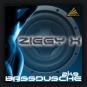 Ziggy X - Bassdusche 2K9