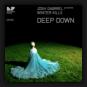 Josh Gabriel pres. Winter Kills - Deep Down