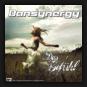 Dansynergy - Das Gef�hl
