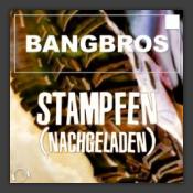 Stampfen (Nachgeladen) (Remix Bundle)