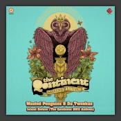 Island Refuge (The Qontinent 2013 Anthem)
