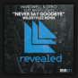 Hardwell & Dyro feat. Bright Lights - Never Say Goodbye (Wildstylez Remix)
