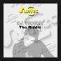 DJ Tricky - The Riddle