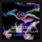 Petruccio & Modulate feat. Marie Louise - Missing