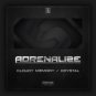 Adrenalize - Cloudy Memory