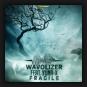 Wavolizer - Fragile