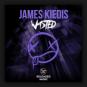 James Kiedis - Wasted