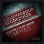 Solid Stone & Tiffany Johnston - Tempted