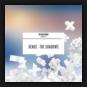 Xense - The Shadows