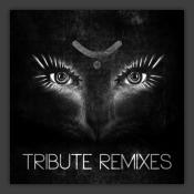 Tribute Remixes