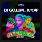 DJ Gollum feat. DJ Cap - Oxymorons 2018