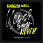 Sascha Nell feat. Addie Nicole - Never Say Never