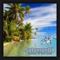 Solomon08 - Blue Grass