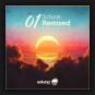 Various Artists - Soluna Remixed 01