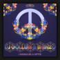 DJ Gollum feat. Shinzo - I Wanna Be A Hippie
