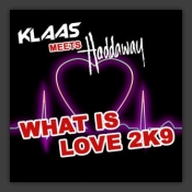 What Is Love 2k9