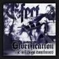 E-Fect - Glorification