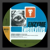 5 Years Of Enzyme Records